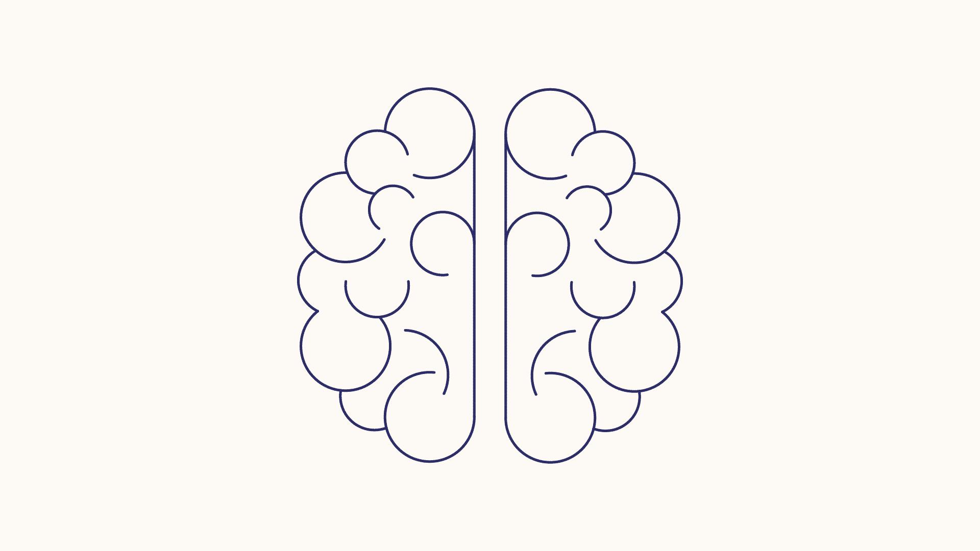 Skizofreni og psykose - hjernen